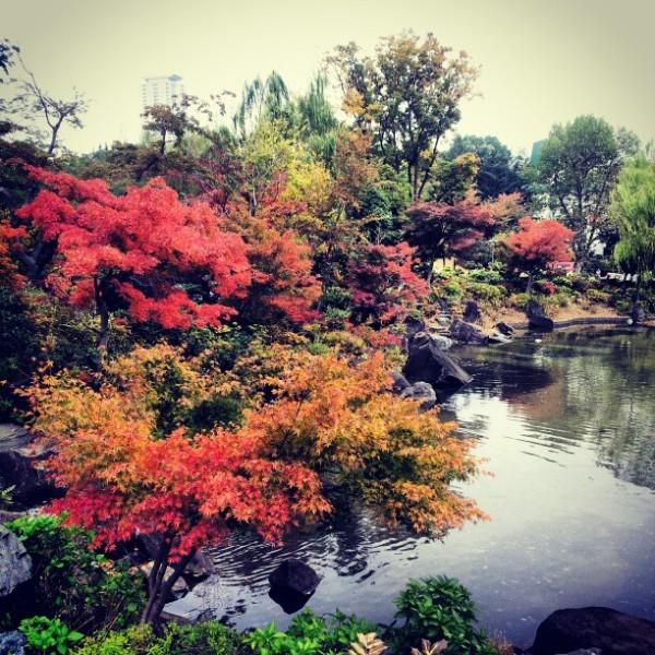 Parque  Hinokicho 檜町公園