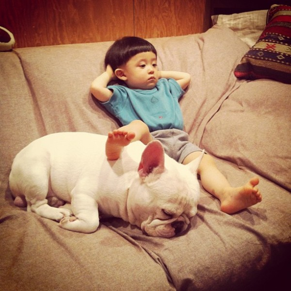 Aya-Sakai-japanese-boy-and-his-bulldog-4-600x600